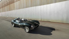 1955 Jaguar D-Type with Driver